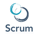 Scrum Dumps Exams